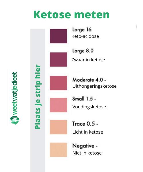 hoe ketose meten testen
