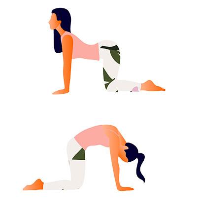 yoga-oefeningen-cat-cow-pose