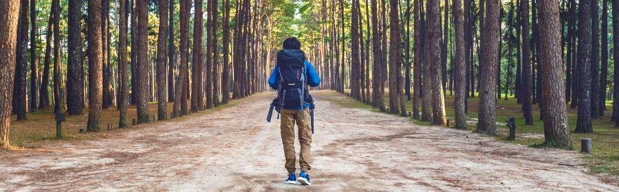 Conditie opbouwen met hiking